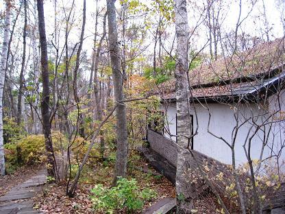 2008-10-31-6ya-4.jpg