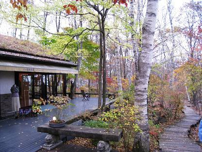 2008-10-31-6ya-5.jpg