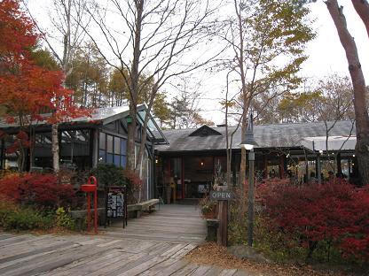 2008-10-31-7ya.jpg