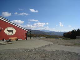 2008-11-01-8.jpg