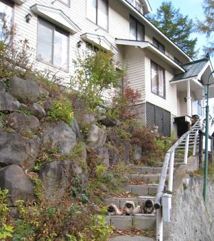 2008-11-01-sugadaira.jpg
