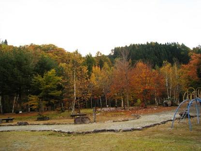 2008-11-02-11.jpg