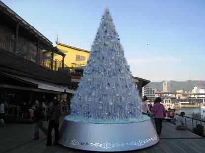 2008-11-15-16.jpg