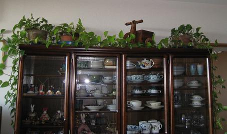 2008-12-10-3.jpg