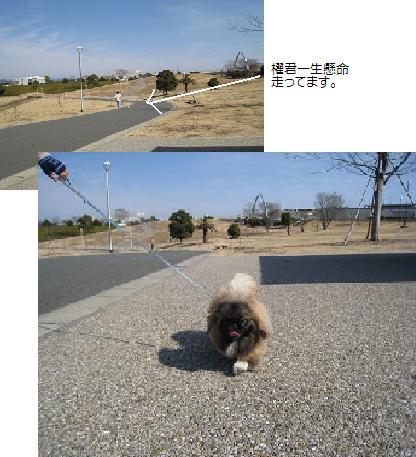 2008-2-10-7.jpg