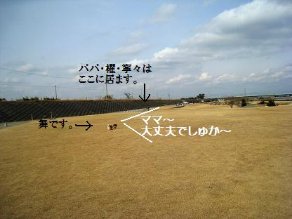 2008-2-3-5.jpg