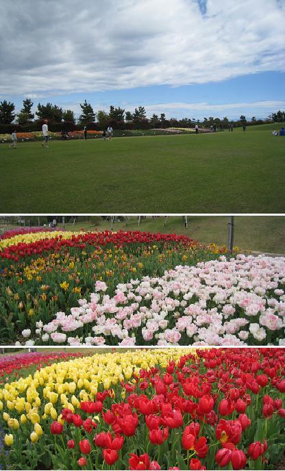 2008-4-20-2.jpg