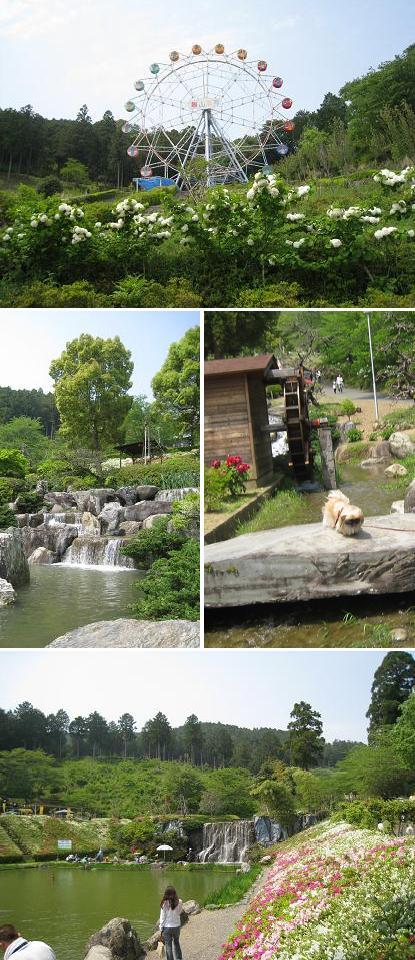 2008-4-29-16.jpg