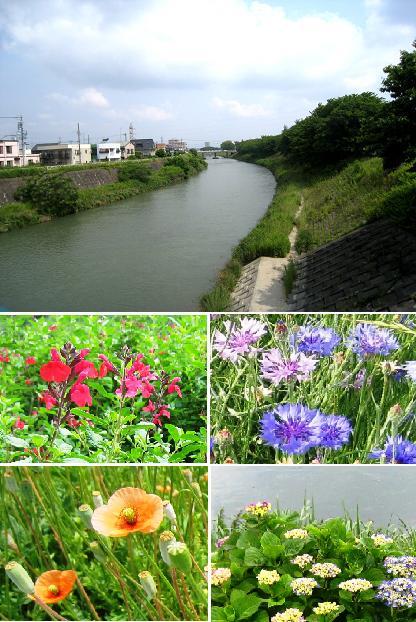 2008-5-22-4.jpg