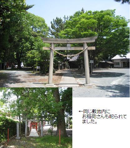 2008-5-26-3.jpg