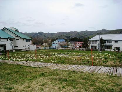 2008-5-3-2.jpg