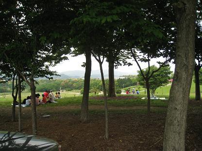 2008-5-5-3.jpg