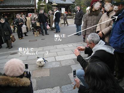 2009-01-17-10.jpg