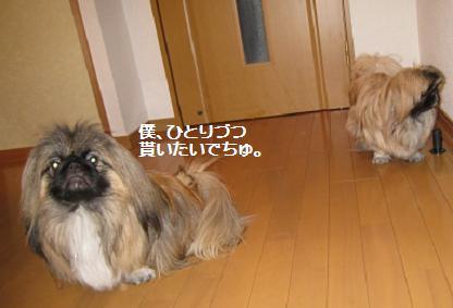 2009-02-03-10.jpg