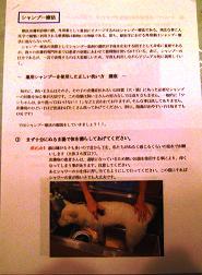 2009-03-08-3.jpg
