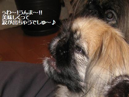 2009-03-13-5.jpg