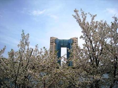 2009-04-05-5.jpg