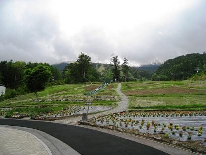 2009-06-06-8.jpg