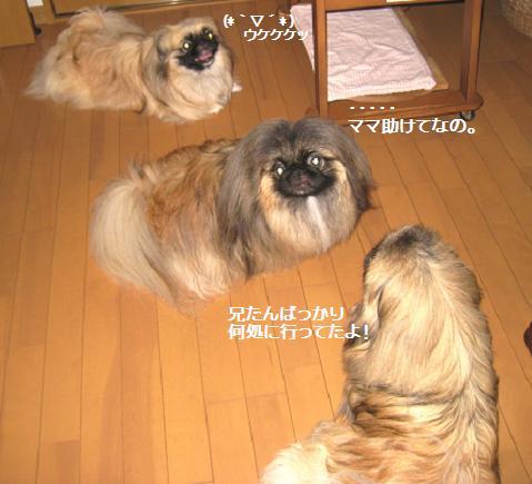 2009-08-09-11.jpg