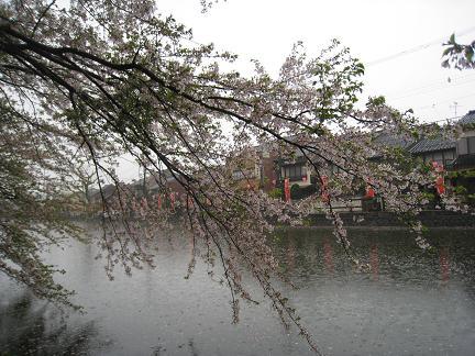 kojou-13.jpg