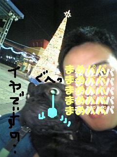 DVC00102_M.jpg
