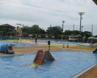 子供向けプールがあちこちに。。。