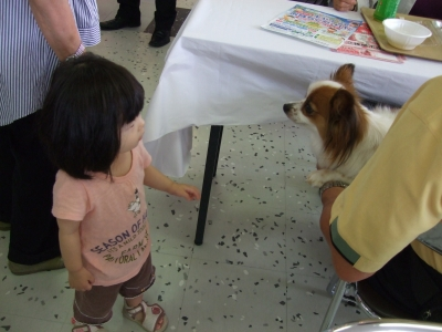s-犬とアン子