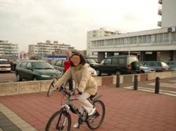 Holland 2008 7