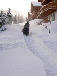 Champ snow 08 3