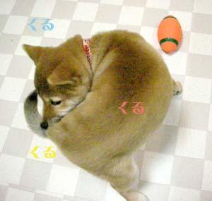 20080204b.jpg