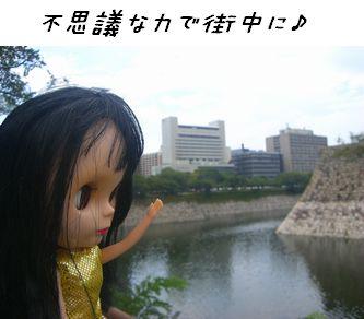 goiy1.jpg