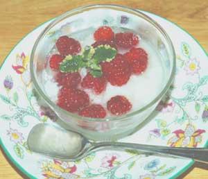 スキムミルクのヨーグルト