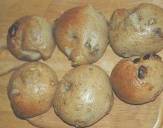 ルバーブ酵母のベーグル