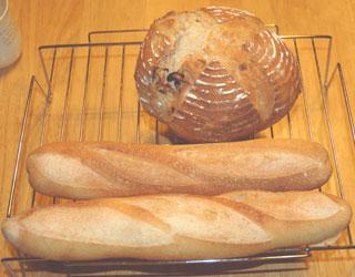 ルバーブ酵母のフランスパンとカンパーニュ
