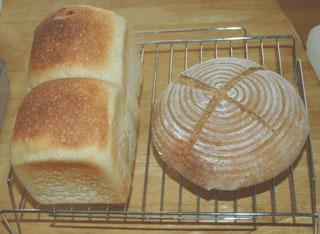 山食とりんご酵母パン