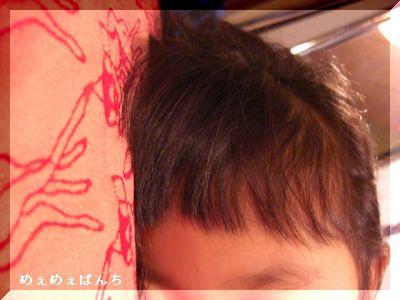 100-CIMG0356_CIMG0356081124.jpg