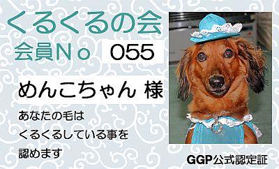 200810.9GGP公式認定証くるくるの会No.55
