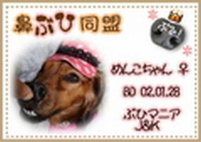鼻ブヒ同盟2008.10.17