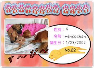 2008.10.22スーピワン倶楽部No.22みわらびー&茶々麻呂