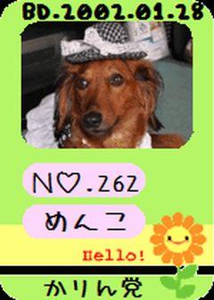 かりん党 No262  2008.10.24