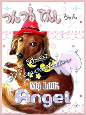 Dog Day愛犬ロミオ 200810.26つんつるてんしNo.28
