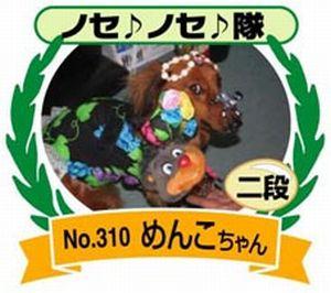 310-01ノセノセ隊2段2008.10.6  トホホわんこライフ