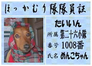 2009 ほっかむり隊No.1008