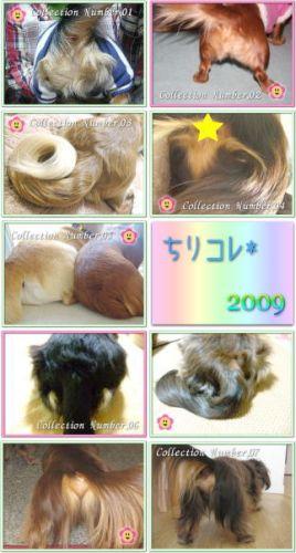 006_pちりコレ2009★小 へたれりっくん20091.19