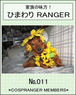 愛犬とあたし ひまわりレンジャー No.11