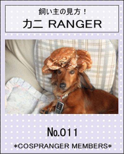 CAR5W81D愛犬とあたしコスプレンジャーでかにレンジャー2009.1.28