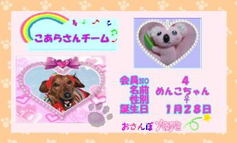 ミニピンフジコの育児日記くまこあチーム2009.3.6