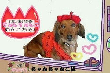 o0240015910149069960旅犬Laniちゃんちゃんこ組No.18 2009.3.6