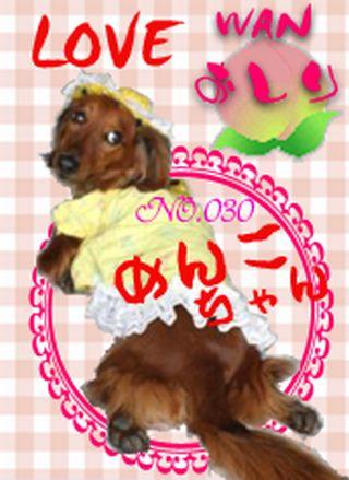 untitledLove Wanおしりの会No.30 ゆずひな2009.4.29