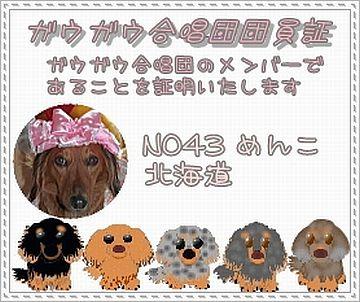 2009.6.10 ガウガウ合唱団No.43